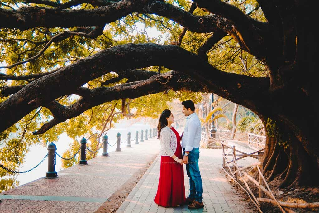 couple standing under big tree for pre wedding photoshoot